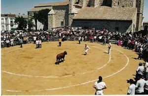 """Tradicional """"Vaca de San Isidro"""""""