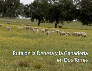 RUTA DE LA DEHESA Y LA GANADERÍA