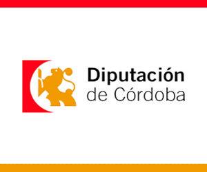 AYUDA CONCEDIDA DIPUTACIÓN DE CÓRDOBA CONVOCATORIA IGUALDAD 2021